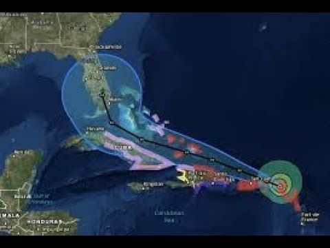 Hurricane Irma's Impact on Seafood