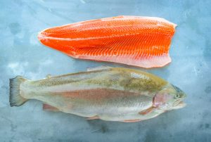 Skye Steelhead Gets the Gold for Natural and Sustainable Aquaculture