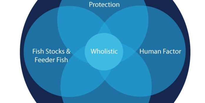 A Makeover for US Fishery Management With an Updated Holistic Healing Approach